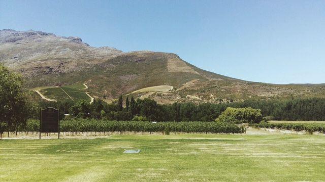 #summer #southafrica