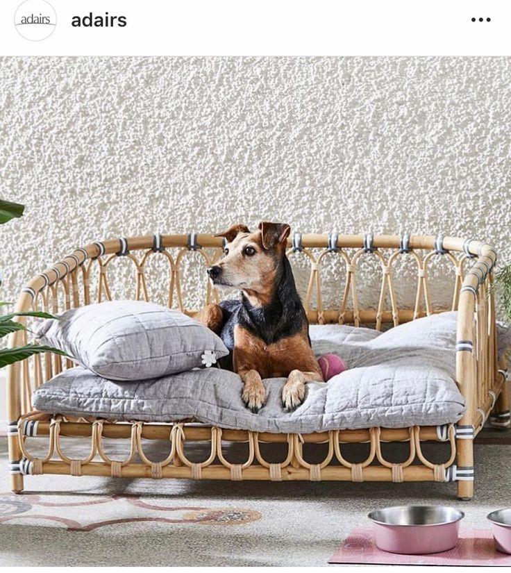 Adairs pet bed. Boho dog bed, Rattan bed, Boho dog