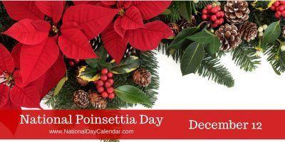 NATIONAL POINSETTIA DAY – December 12