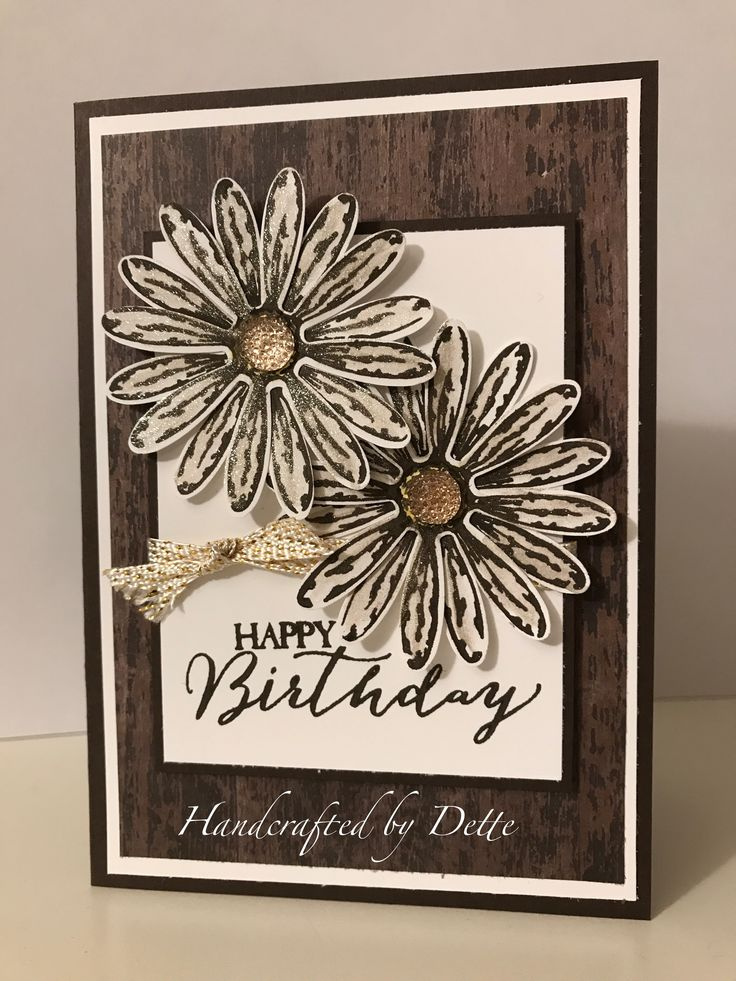 SU Daisy Delight, Butterfly Basics