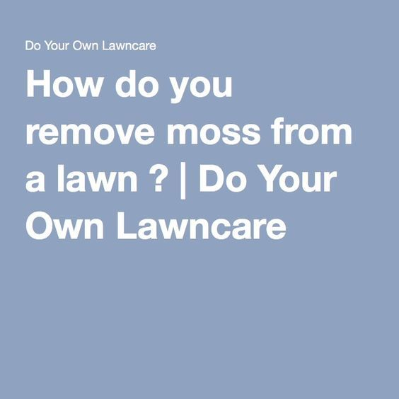 How do you remove moss from a lawn ? | Do Your Own Lawncare
