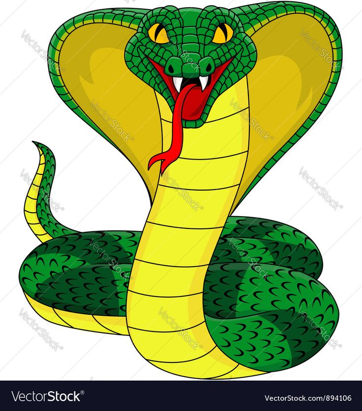 Mean Cartoon Snakes | www.pixshark.com - Images Galleries ...
