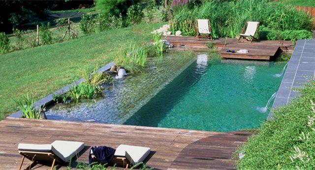 """Las piscinas naturalizadas, también conocidas como """"biopiscinas"""", están compuestas por una zona de baño con una superficie del 80 % y en el 20 % restante esta instalado el """"biofiltro"""", ambos espacios son separados por un muro, las dos zonas están integradas con la misma agua."""