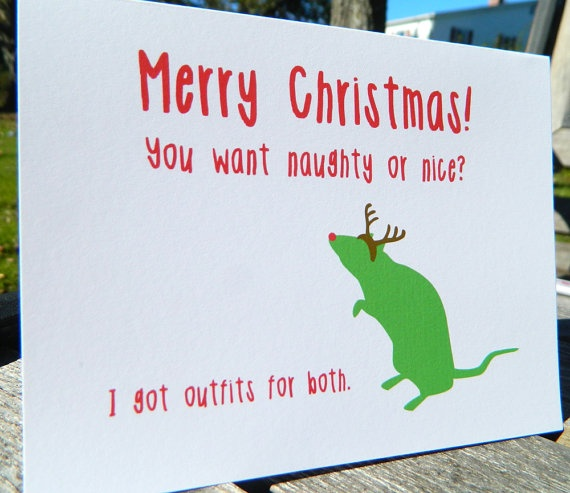 Christmas Quotes For Cards: 89 Best Funny Christmas Cards Images On Pinterest