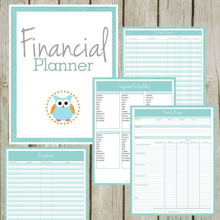 Organize Your Budget with this Adorable Financial Planner - Krafty Owl