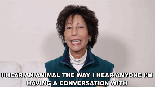 Meet Ellen Lance, pet communicator. | These People And Their Pets Met With A Pet Psychic For The First Time And It Blew Their Minds