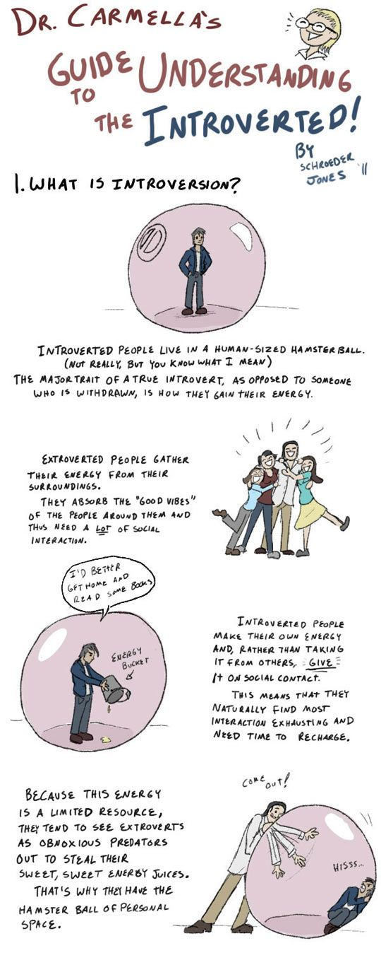 Guide to Understanding the Introverted