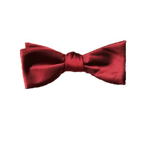 8 best bowties are cool images on pinterest bow ties