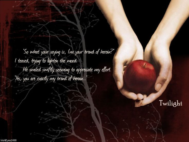 """The """"TWILIGHT SERIES""""...wonderful amazing and couldn't put it down once I started.  Read all 3 books (Breaking Dawn) came out a week later...but read them all in 2 1/2 weeks.  AWESOME!!"""