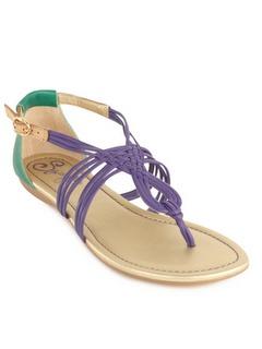 Super cute: Pretty Sandals, Colors Combos, Fashion Style, Summer Shoes, Seychelles Shoes, Seychel Sandals, Purple And Teal Shoes, Cute Sandals, Seychel Footwear