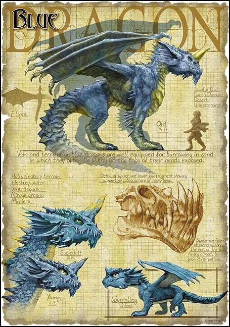 Blue Dragon by Richard Sardinha                                                                                                                                                     Plus