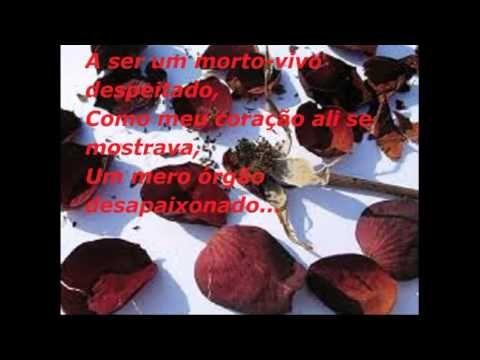 Uma dúzia de rosas vermelhas querida! - Video Poema Gótico - Me Morte/MP...
