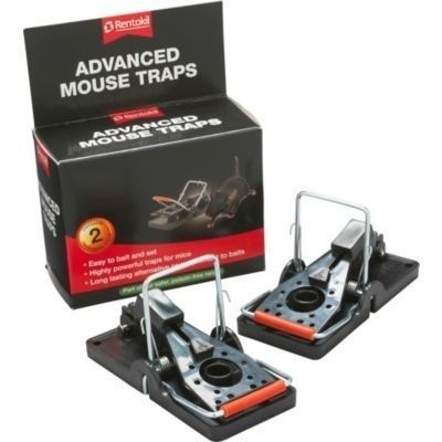 how to make a capture mouse trap