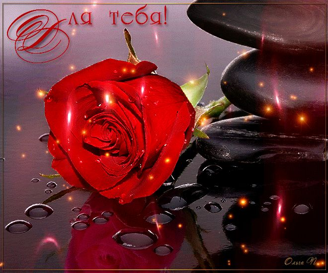 Гиф картинки розы для тебя