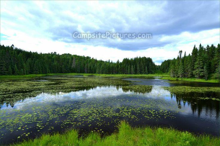 Algonquin Park Trails, Camping in Ontario, Logging Museum #algonquinpark