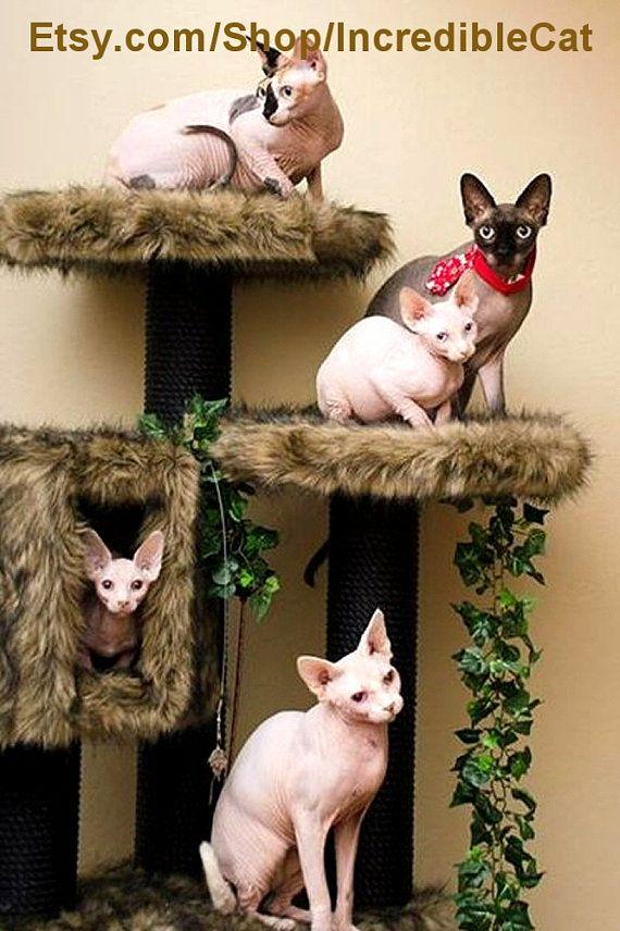 Designer Furniture Sale: LUXURY Cat FURNITURE SALE 5' Trees Designer Cat Beds