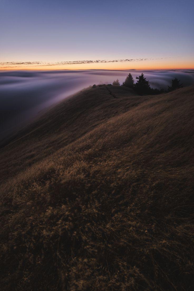 Marin County, California  © Lorenzo Montezemolo (alt crop)