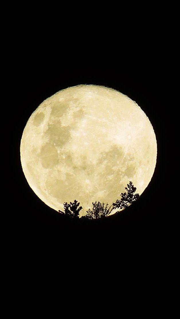 ... luna lunita de san juan, tengo un deseo... :D