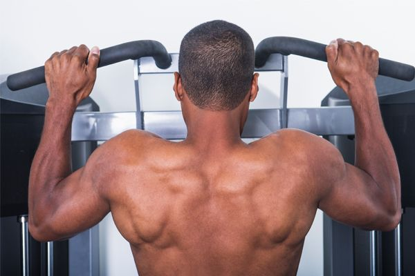 Back and Biceps Muscle-Builder Workout