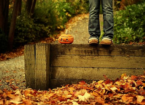 .Delicious Autumn, Fall Leaves, Autumn Leaves, Celebrities Fall, Fallhalloween Ideas, Photos Shoots, Autumn Colors, Halloween Photos, New Years