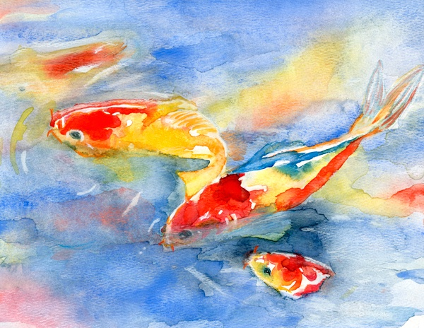 17 best images about watercolor for Fish out of water watercolor