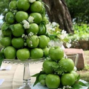 137 best apple themed wedding images on pinterest apples table apple centerpieces but with red apples for a fall wedding kathleen maybe edible flowers in between the candy junglespirit