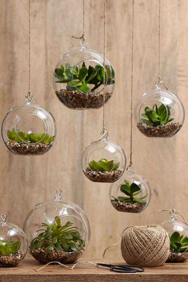 Hanging terrariums Create mini-garden