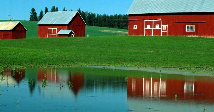 Como vedar um tanque de maneira natural. Um tanque de água bem construído é um item valioso para um fazendeiro ou um proprietário rural suburbano. Ele fornece água para o gado, oportunidade para a pesca, controle de erosão do solo, proteção contra incêndios e um belo local para canoagem, natação ou para relaxar. Os tanques tipicamente contêm uma variedade de tipos de solo e são propensos ...