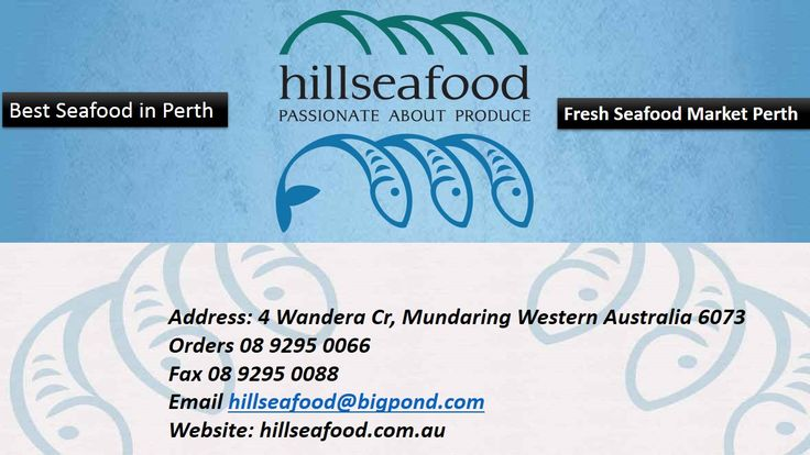 Visit Hill Sea Food | Fresh Seafood Market Perth - Buy quality and fresh seafood in Perth from Hill Sea Food a biggest and well-known fresh seafood market in Perth with wholesale price. Our main aim to give finest quality fresh seafood bring to your table. For More Detail Visit our website: http://hillseafood.com.au/