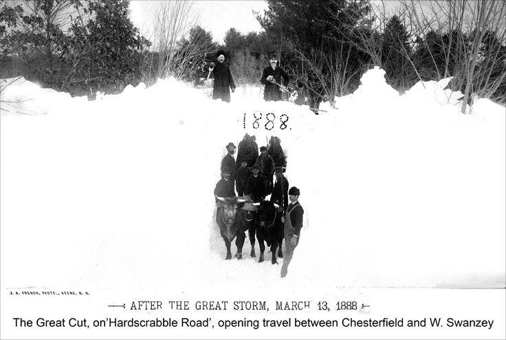 Les 113 meilleures images du tableau Winter Wonderland ...