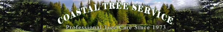 Coastal Tree Service #Oakland_emergency_tree_service #emergency_tree_service_in_Oakland #Oakland_local_tree_service