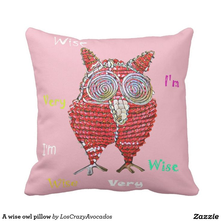 A wise owl pillow