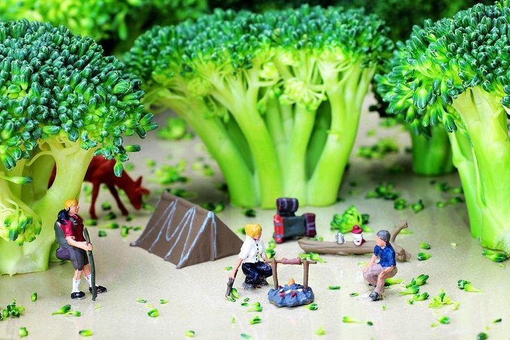 Broccoli camping...