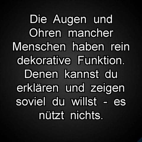 #sprüche #spruch #fail #fakten