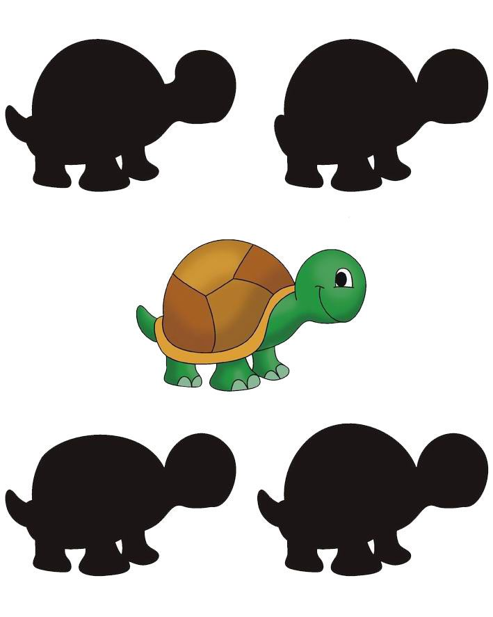 printable worksheets  u00bb shadows for kids worksheets