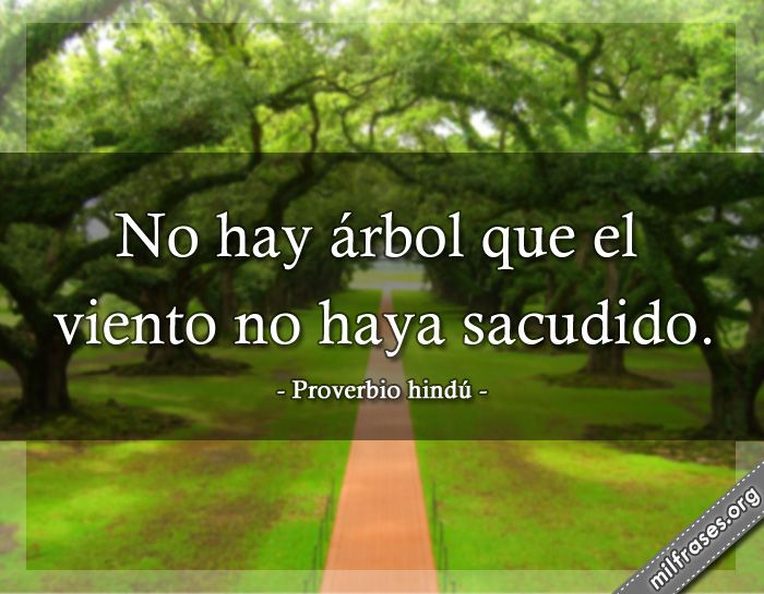- Proverbio hindú