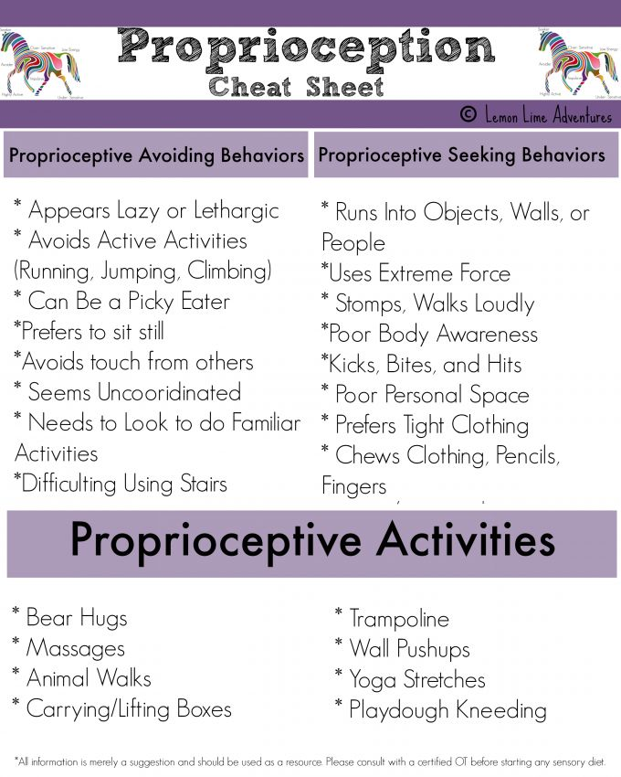 Proprioceptive Input: Sensory Processing Explained (Sensory processing disorder often comes hand in hand with Autism)