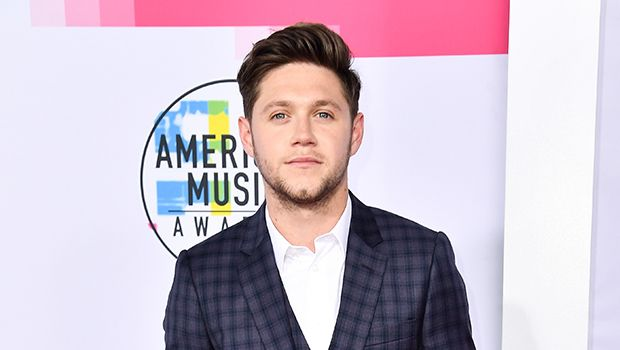 AMAs Hottest Hunks 2017: Niall Horan, Nick Jonas, & More Heat Up The Red Carpet https://tmbw.news/amas-hottest-hunks-2017-niall-horan-nick-jonas-more-heat-up-the-red-carpet  Niall Horan, Nick Jonas, and more hotties lit up the red carpet at the 2017 American Music Awards and we can't look away! Check out some of our favorite hunks here!It's time to fan ourselves! Niall Horan , 24, Nick Jonas , 25,Shawn Mendes , 19, and more talented musicians looked their best and turned heads on the red…