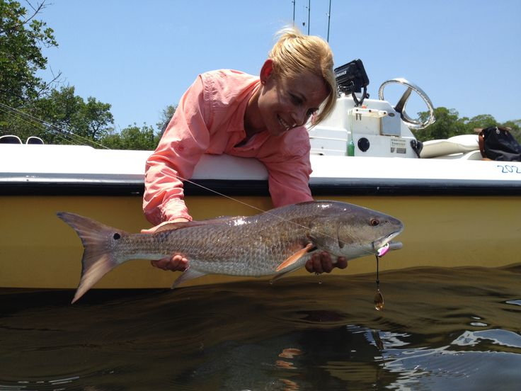 16 best images about catch redfish on pinterest l 39 wren for Redfish fishing tips