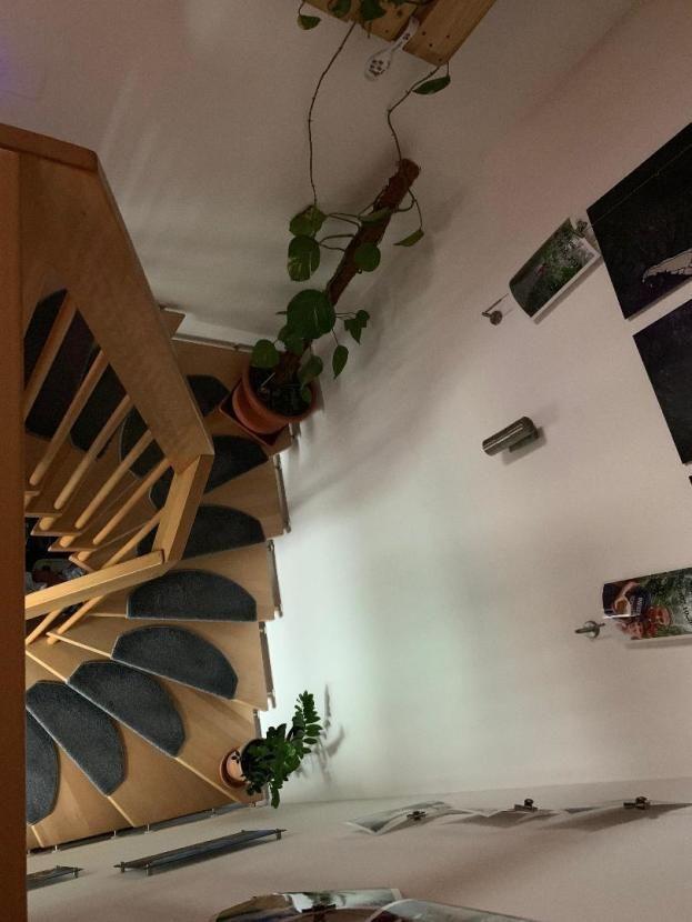 Nurnberg Wohnungssuche 2 5 Zimmer Maisonette Wohnung Ab 01 03 Zu Vermieten 2 5 Zimmer Maisonette Wohnung I Wohnung Mieten Wohnung Zu Vermieten