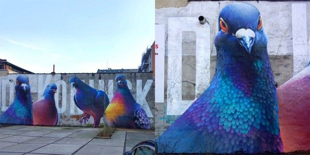 Dutch street artist Stefan Thelen (also known as Super A) draws his inspiration from the most hated animal of the big cities, the pigeon, in order to make it the hero of his giant mural frescos. Portraits of pigeons are dominating the city by being posted on tall buildings' facade.