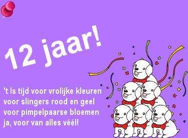 Leuke verjaardagswens voor een 12e verjaardag op Verjaardag-Gedicht.nl