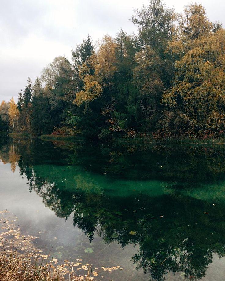 Autumn  Передать реальную картину этого пейзажа на фото невозможно, я смогла только максимально приблизить цвета😍...в жизни лес и водоём с кристально прозрачной водой смотрелись завораживающе и очень красиво🙈🙆 добрых и волшебных всем снов✨#отражаясь_в_воде