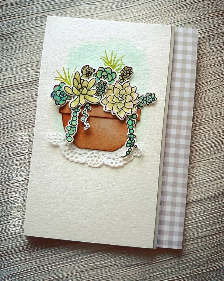 I have a succulent new love... ❤ Oh So Succulent bundle including a coordinating stamp set and Framelits, coloured with the new watercolour pencils *swoon* Coming at you on January 4th in the spectacular Occasions Catalogue! #stampinup #stampinupaustralia