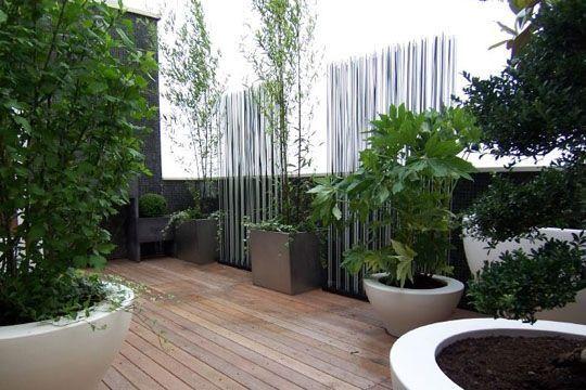 Modern   Contemporary Garden