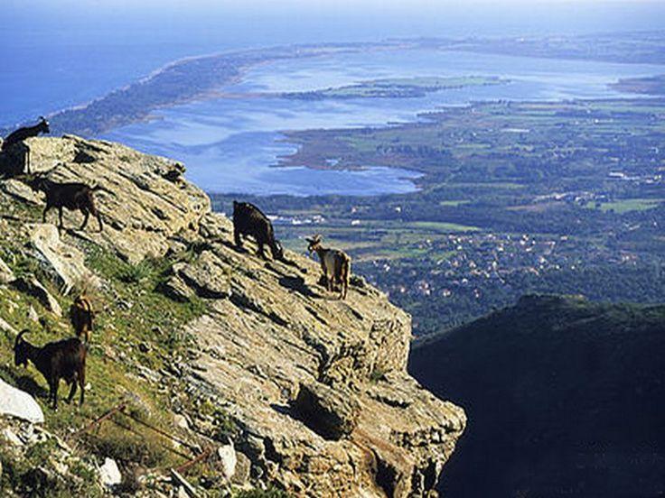 Corsica - Les Cols Corse - Bocca di Teghjime (col de Teghime) est situé au sud du cap Corse, entre les villes de Bastia et Saint-Florent, reliant les microrégions de la Bagnaja et du Nebbio. Il offre un point de vue sur les deux côtes de la Corse, avec Bastia et la mer Tyrrhénienne à l'est, Saint-Florent, le désert des Agriates et la mer Méditerranée à l'ouest.
