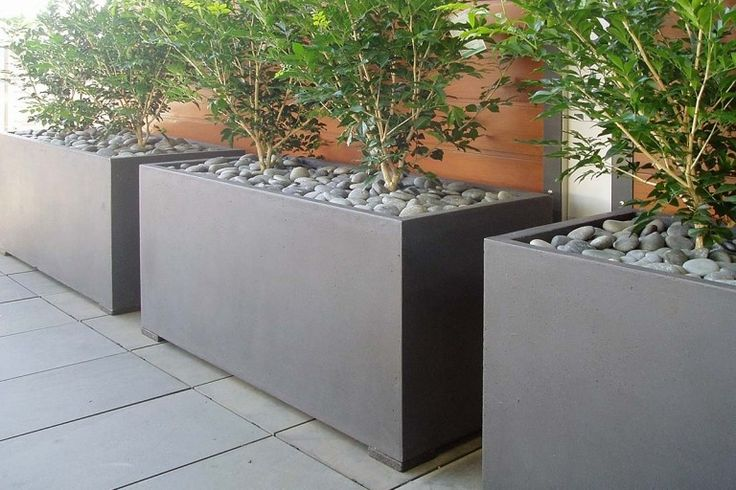 Three large Fibreglass Trough Planters in Dark Grey planted with Murrayas