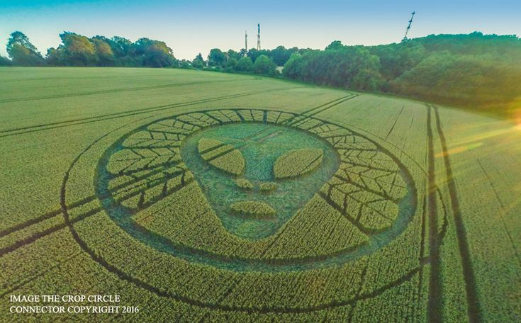 A+Stunning+New+Crop+Circle+Has+Shown+Up+&+It's+Very+Mysterious+(Pictures)