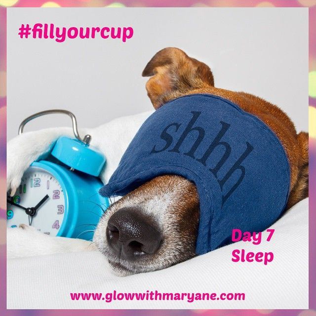 """Day 7 of the 21 Day #fillyourcup Challenge!  Sleep. Are you getting enough? What about quality of sleep? Are you waking up refreshed and restored? Are you crashing at 3pm?  My top tips: turn off electronic devices at least 15 mins before bed. Be in bed by 10pm. Have naps & sleep in whenever you can, they're awesome.  #takecareofyou #selfcare #selflove #timeout #pleasure #nature #breathe #bepresent #beherenow #putyourneedsfirst #youdeserveit #sleep #sleepin #nap #gotobed #rest #restore…"