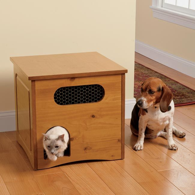 Just Found This Dog Proof Cat Feeder Feeding Station Orvis Uk On For Pets Pinterest Cats And